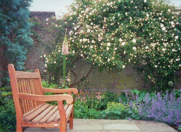 Tim Mackley Cottage Garden Design