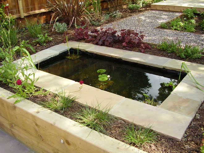 Shady low maintenance garden on two levels for Backyard pond maintenance