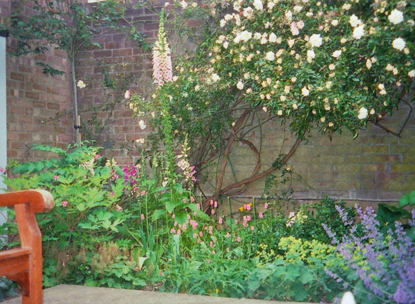 Cottage Garden Style Courtyard Tim Mackley Garden Design